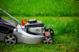 lawn mower closeup